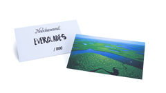 Knockaround Everglades Sunglasses, Card