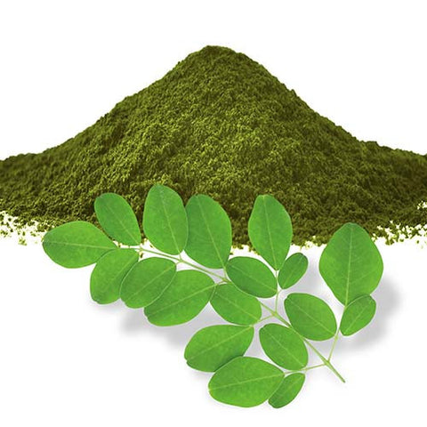 Moringa Leaf Powder 16oz
