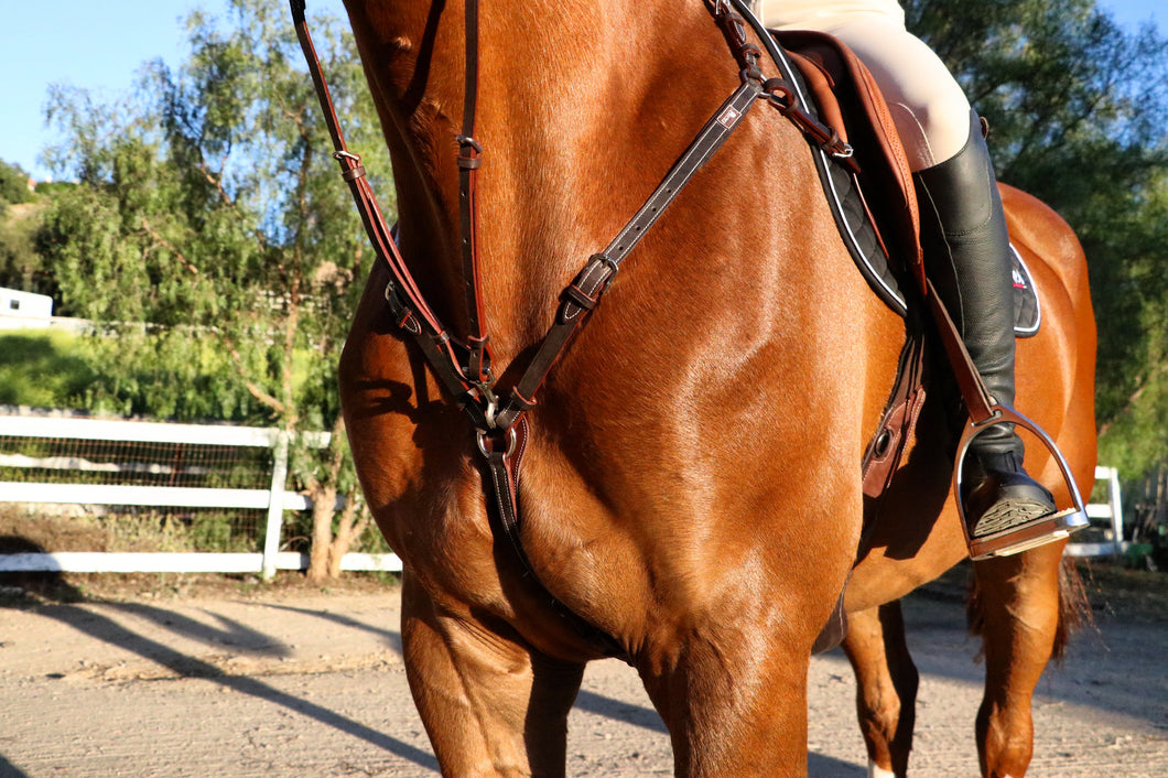 Breastplate: 3 Point Martingale