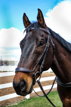 Load image into Gallery viewer, Drop Noseband Bridle