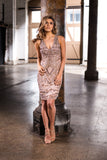 Grace & Blaze All That Shines Cocktail Dress in Blush - Never Twice