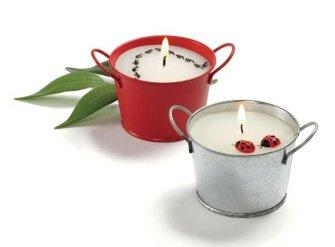 Picnic Ants and Ladybugs Candle Bucket, Set of 2 by Tag