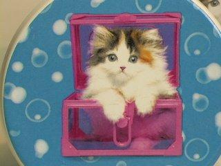 Keith Kimberlin Kitten in Pink Box Ceramic Coaster, Set of 4
