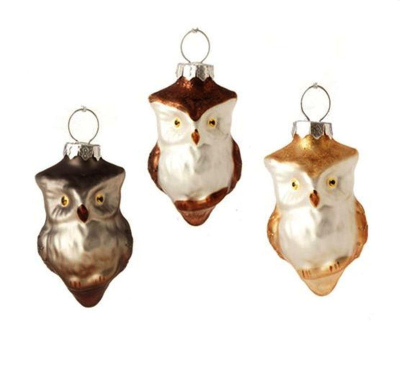 RAZ Owl Blown Glass Ornament, Set of 3