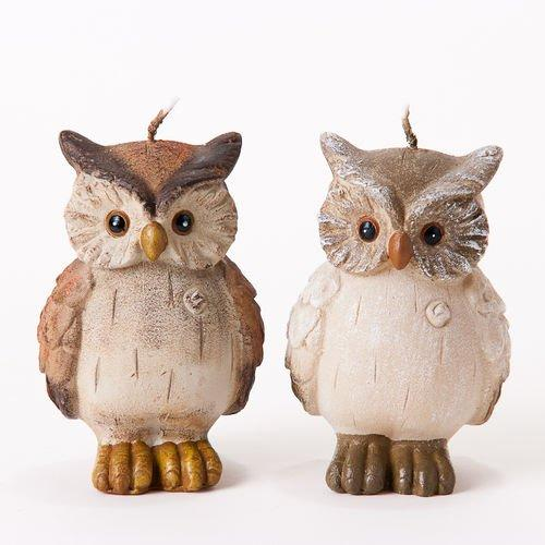 One Hundred 80 Degrees Owl Candle, Set of 2