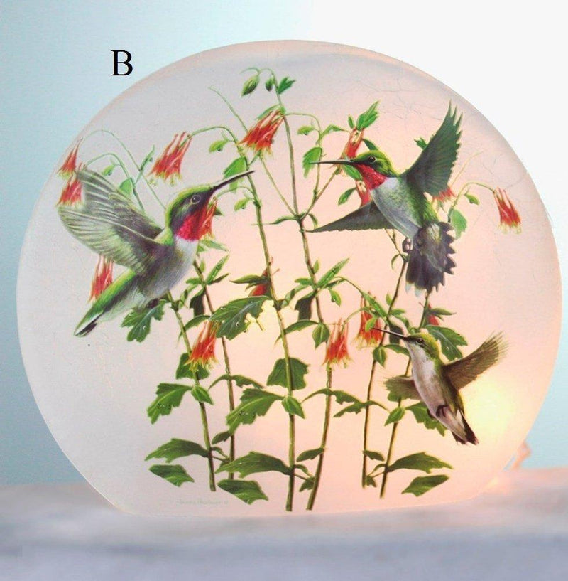 Stony Creek Hummingbirds Lighted Round Glass Vase, Choice of Style