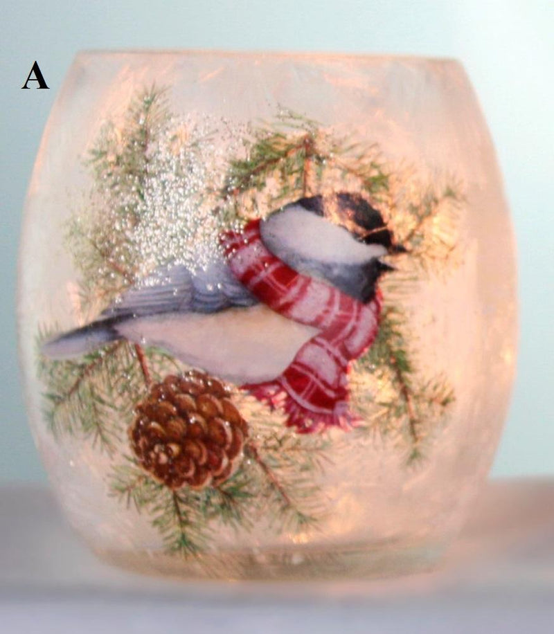 Stony Creek Bundled Bird Collection Lighted Glass Jar, Choice of Style