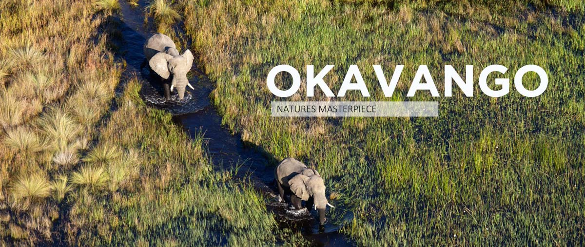 Okavango – Nature's Masterpiece
