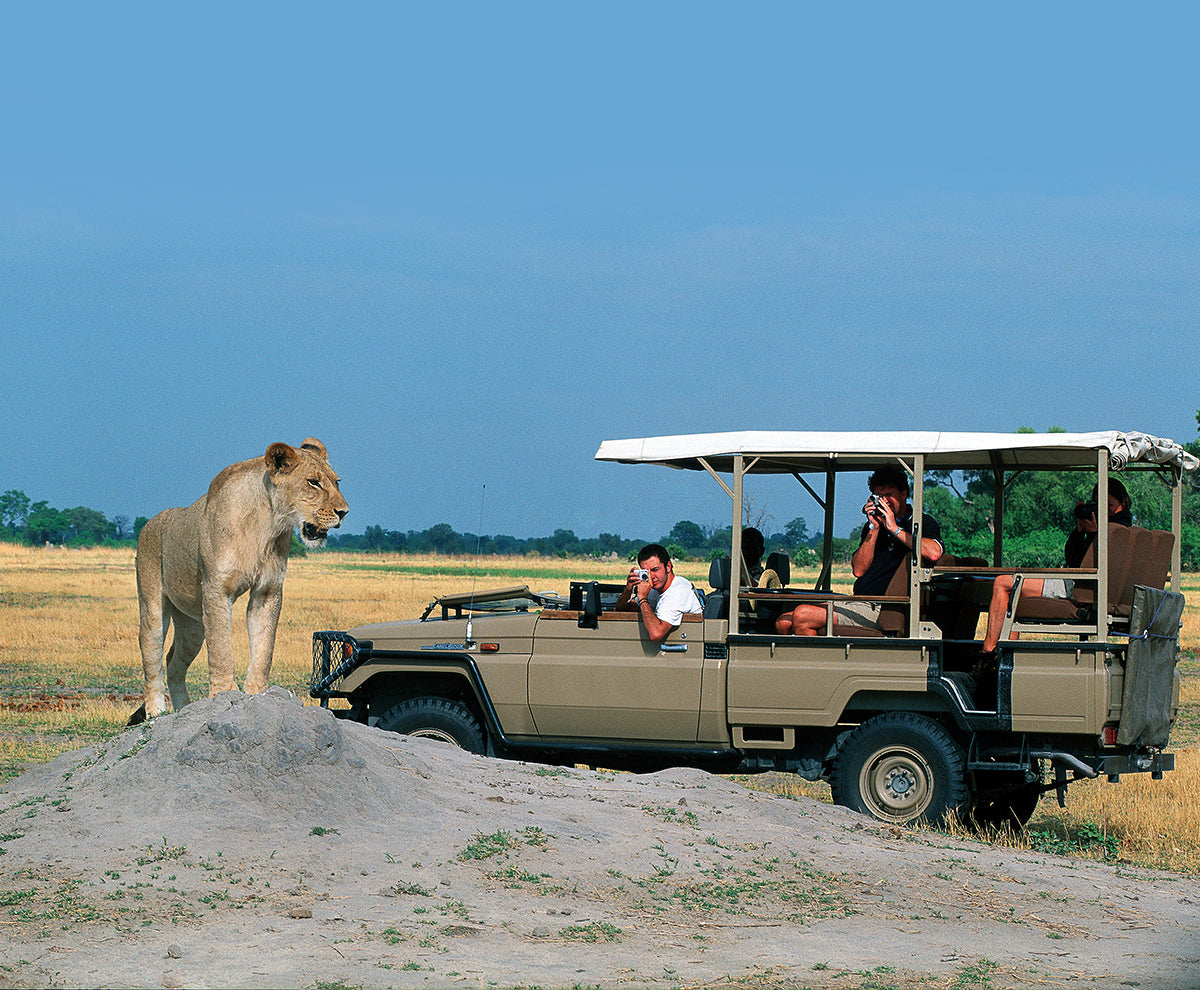 Get the most from your game drive