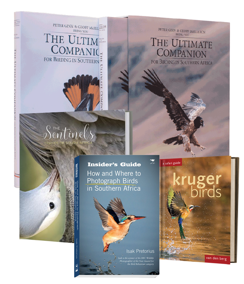 Best Bird Lovers' Bundle - HPH Publishing