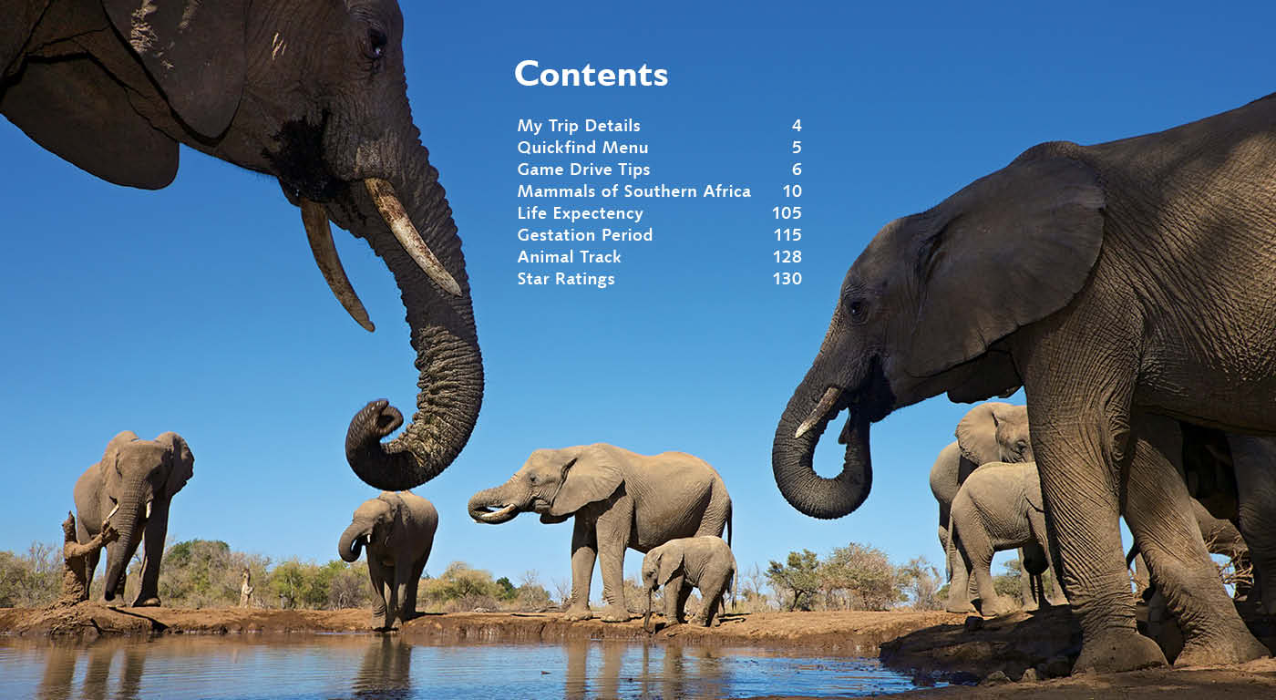 Game Drive Mammals of Southern Africa PDF - HPH Publishing