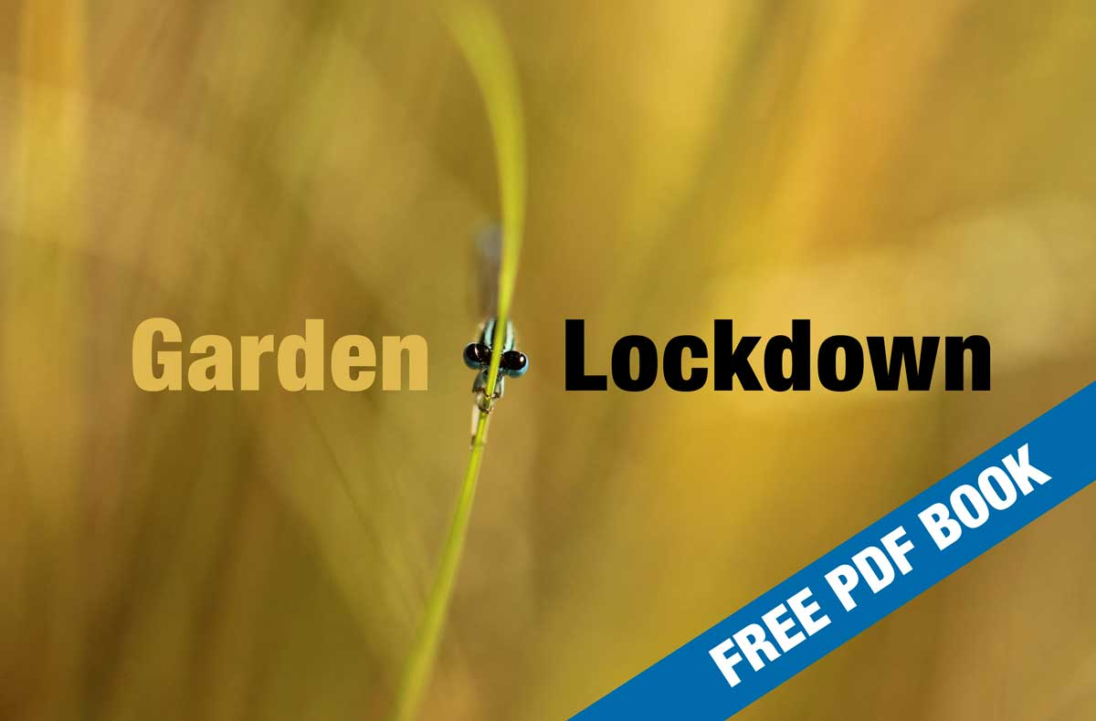 Garden Lockdown PDF Book - HPH Publishing