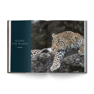Big Seven - Adventures in Search of Africa's Iconic Species - HPH Publishing