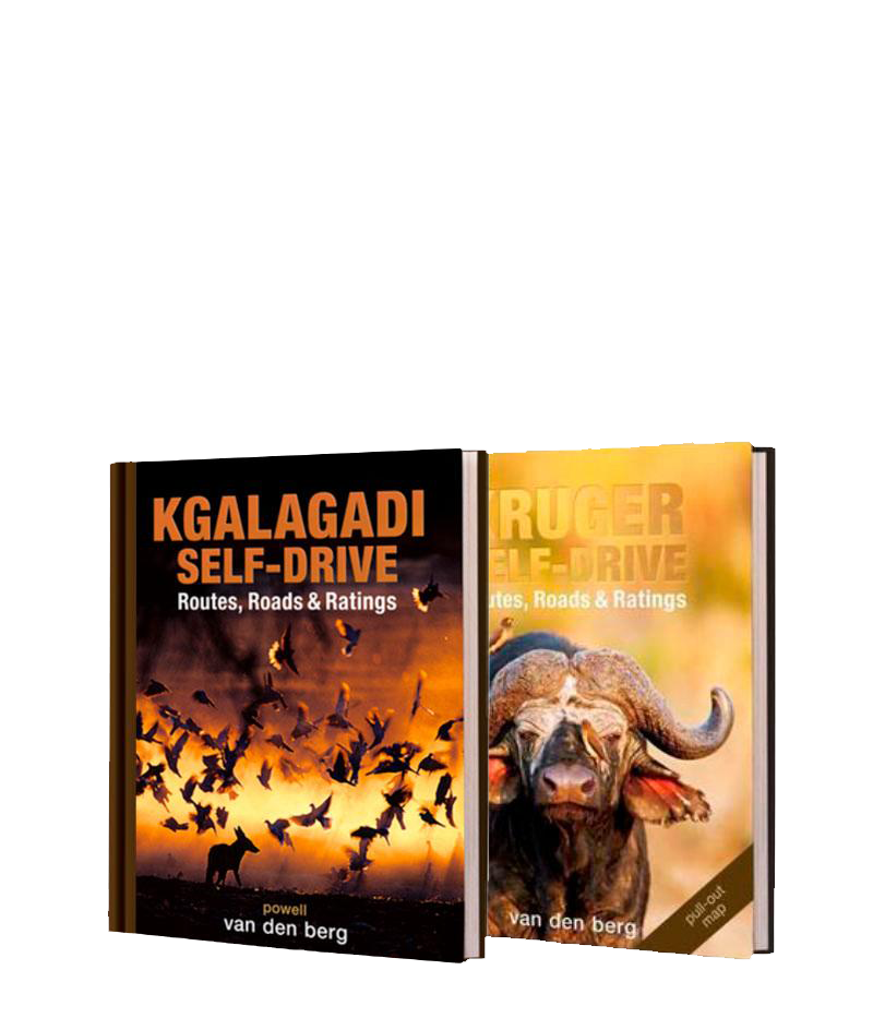 Kgalagadi and Kruger Self-Drive Bundle
