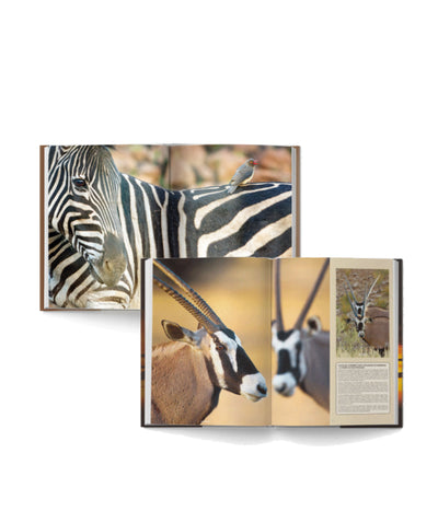 Bundle of Kgalagadi and Pilanesberg Self-Drive Books - HPH Publishing