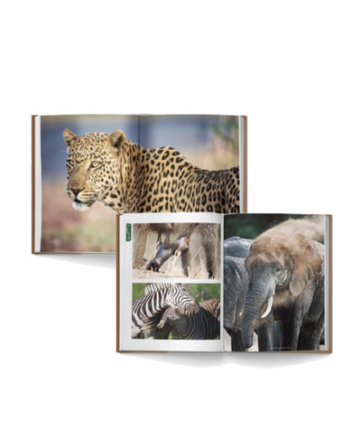 Bundle of Kruger and Pilanesberg Self-Drive Books - HPH Publishing