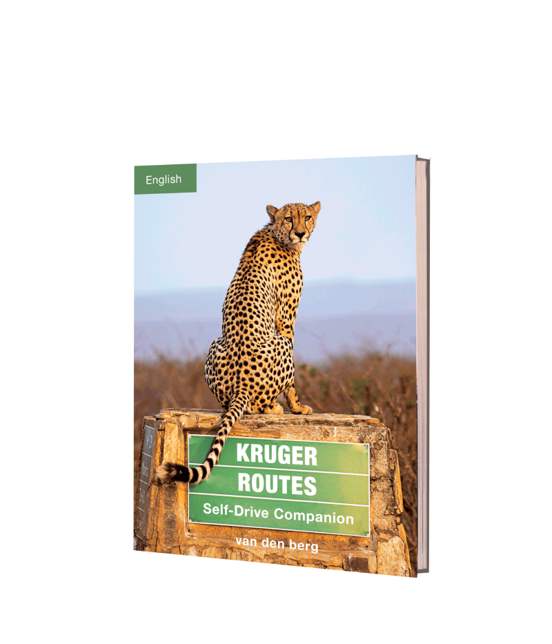 Kruger Routes - English