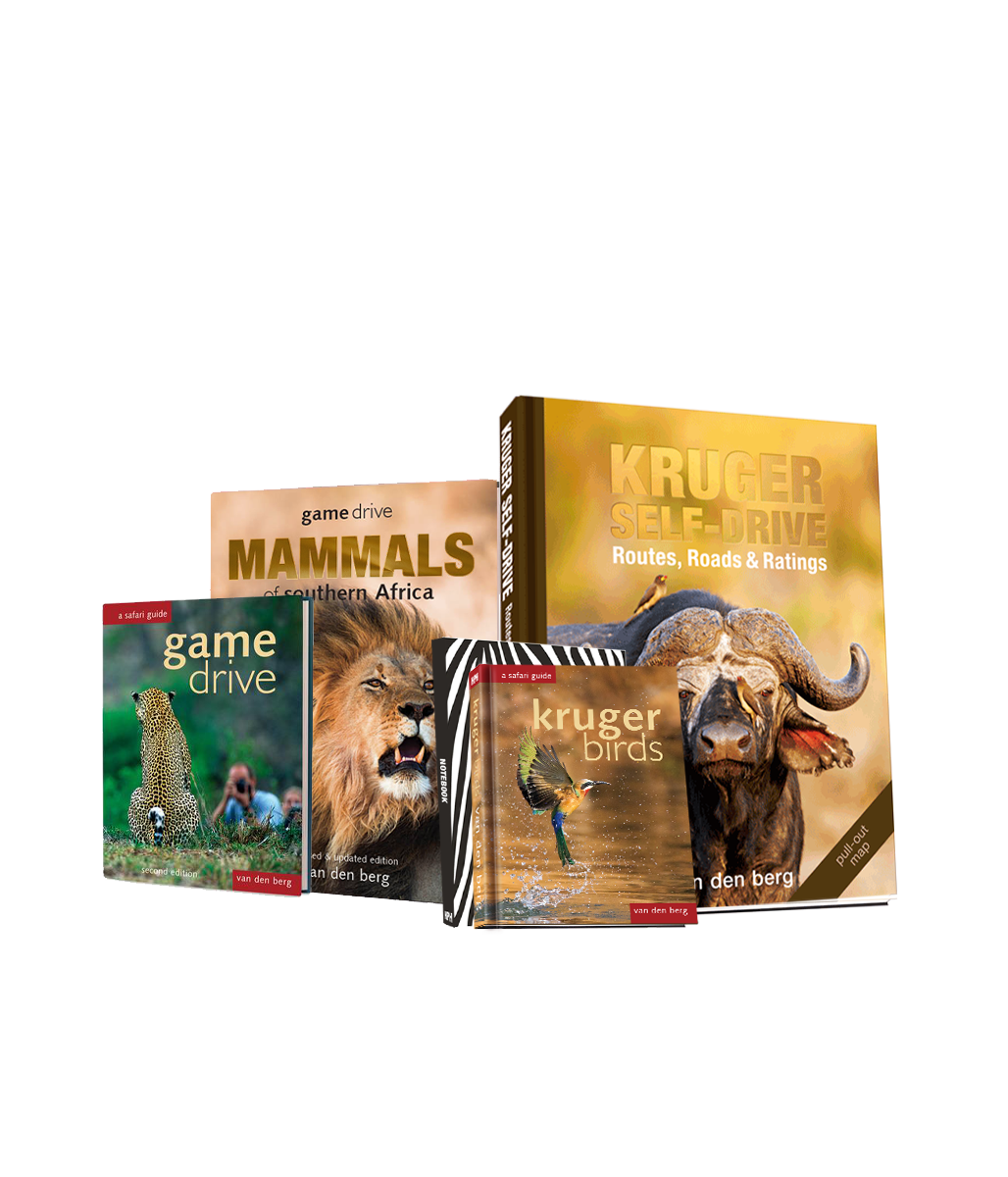 Big Five Kruger Books Bundle - HPH Publishing