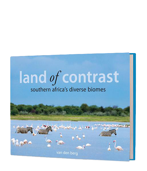 Land of Contrast -Kapama - HPH Publishing