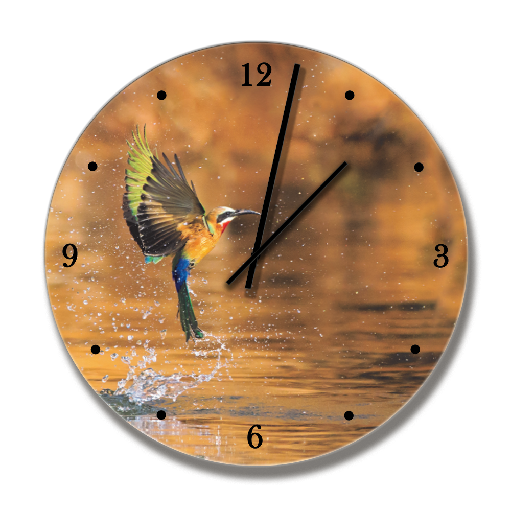 PrintWild Clock with Bee Eater - HPH Publishing