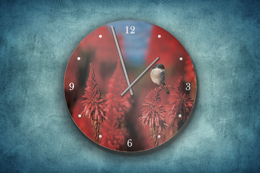 Clock with Art of Nature Shrike image - HPH Publishing