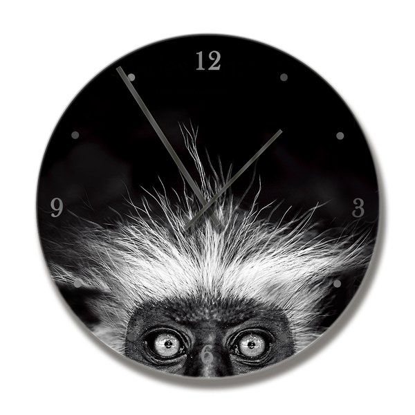 Clock with  Shades of Nature Monkey image - HPH Publishing