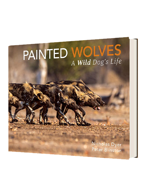 Painted Wolves - A Wild Dog's Life - HPH Publishing