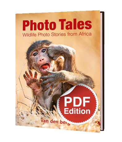 Photo Tales PDF - HPH Publishing