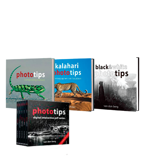 PhotoTips Full Book and Interactive PDF Course - HPH Publishing