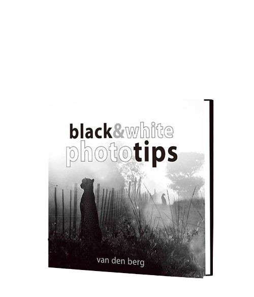 Photo Tips: Black & White - HPH Publishing