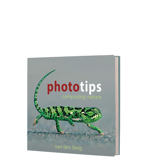 PhotoTips : Composing Nature - HPH Publishing