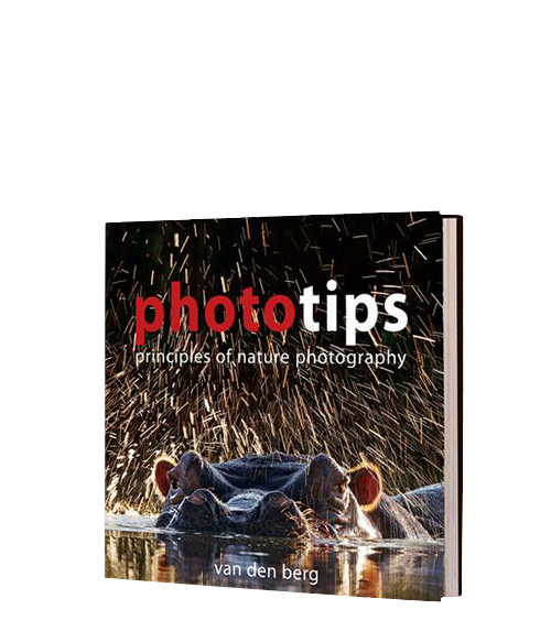 PhotoTips : Principles of Nature Photography - HPH Publishing