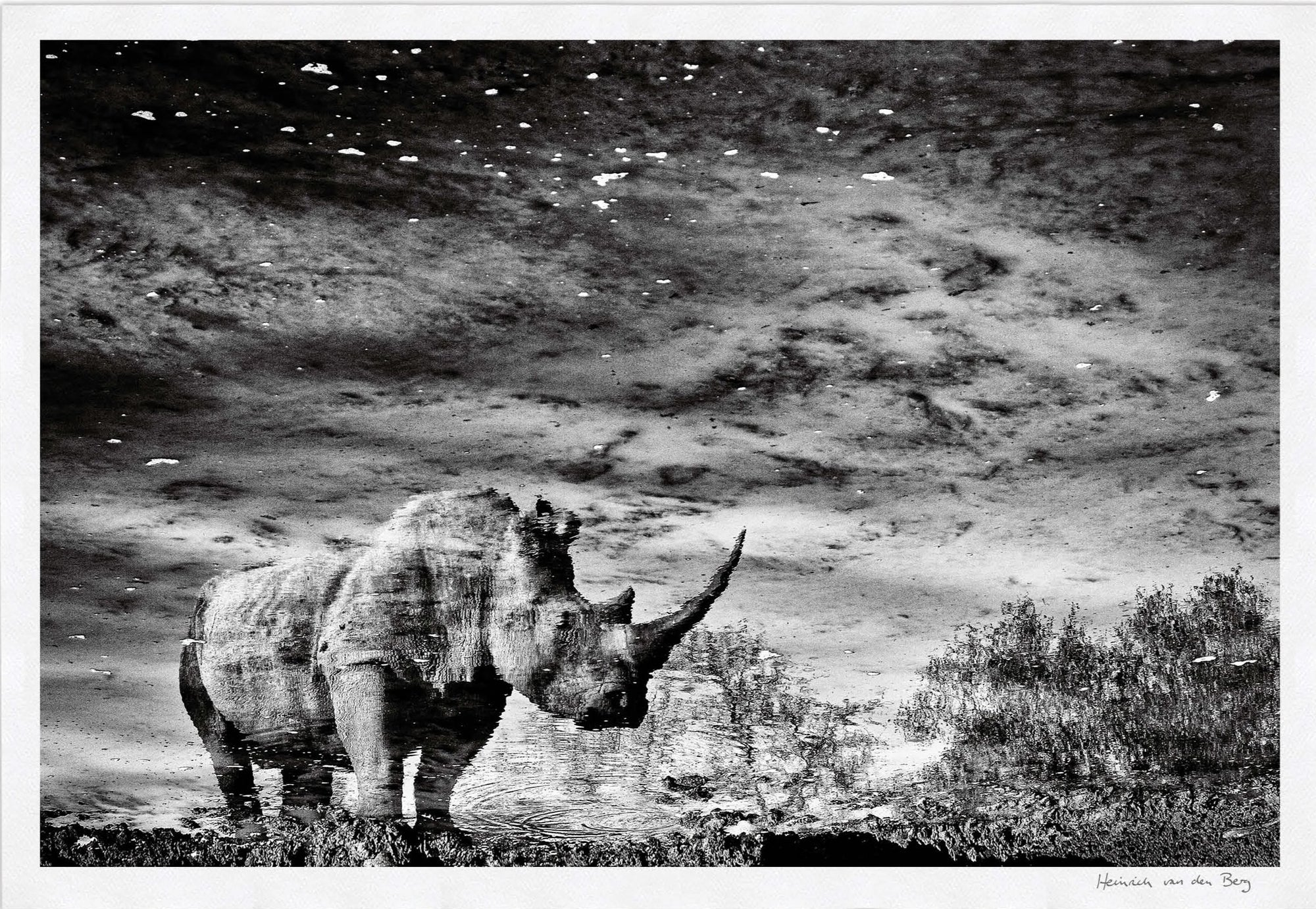 Rhino Unicorn Fine Art Print - HPH Publishing South Africa