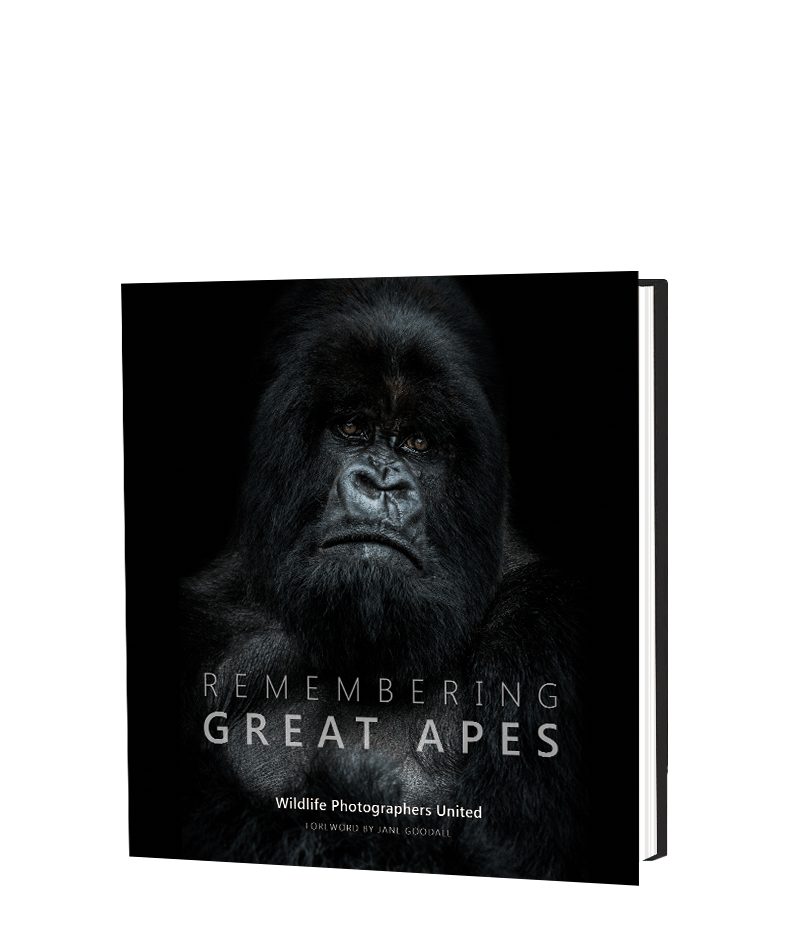 Remembering Great Apes - HPH Publishing South Africa