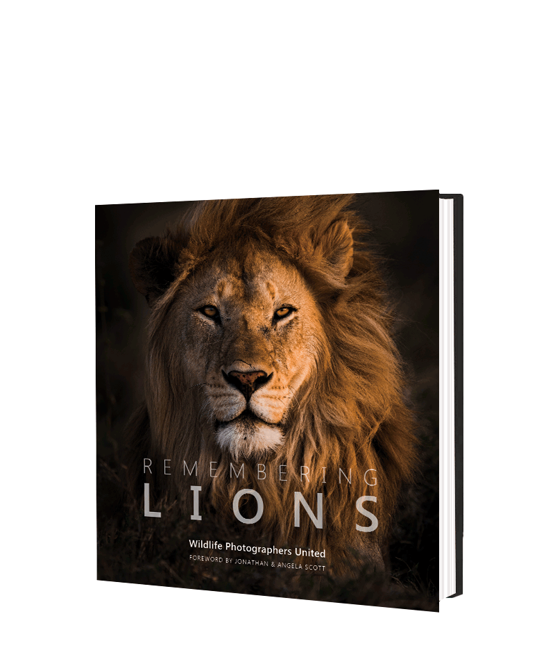 Remembering Lions - HPH Publishing South Africa