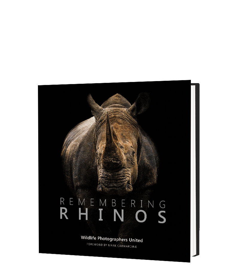 Remembering Rhinos - HPH Publishing South Africa