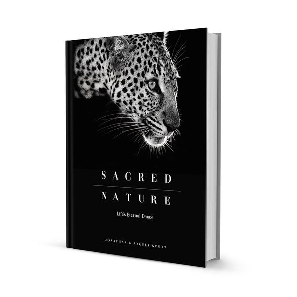 Sacred Nature Book