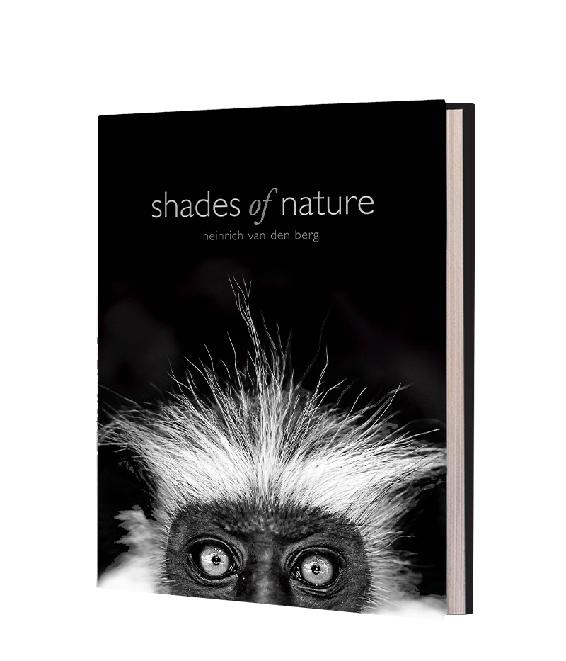 Shades of Nature - Kapama - HPH Publishing