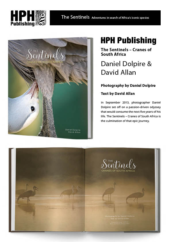 Bundle of Sentinels and Bird Set - HPH Publishing