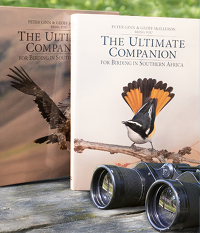 Ultimate Companion to Birding and Free Kruger Birds - HPH Publishing