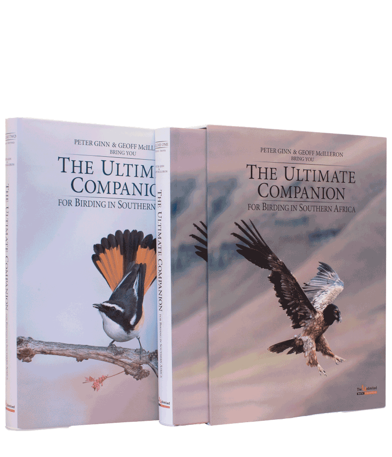 The Ultimate Companion to Birding Set - HPH Publishing South Africa
