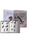 Bundle of The Ultimate Companion to Birding and Kruger Birds - HPH Publishing