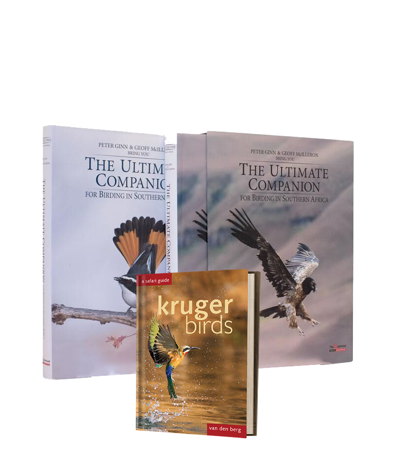 Bundle of The Ultimate Companion to Birding and Kruger Birds - HPH Publishing South Africa