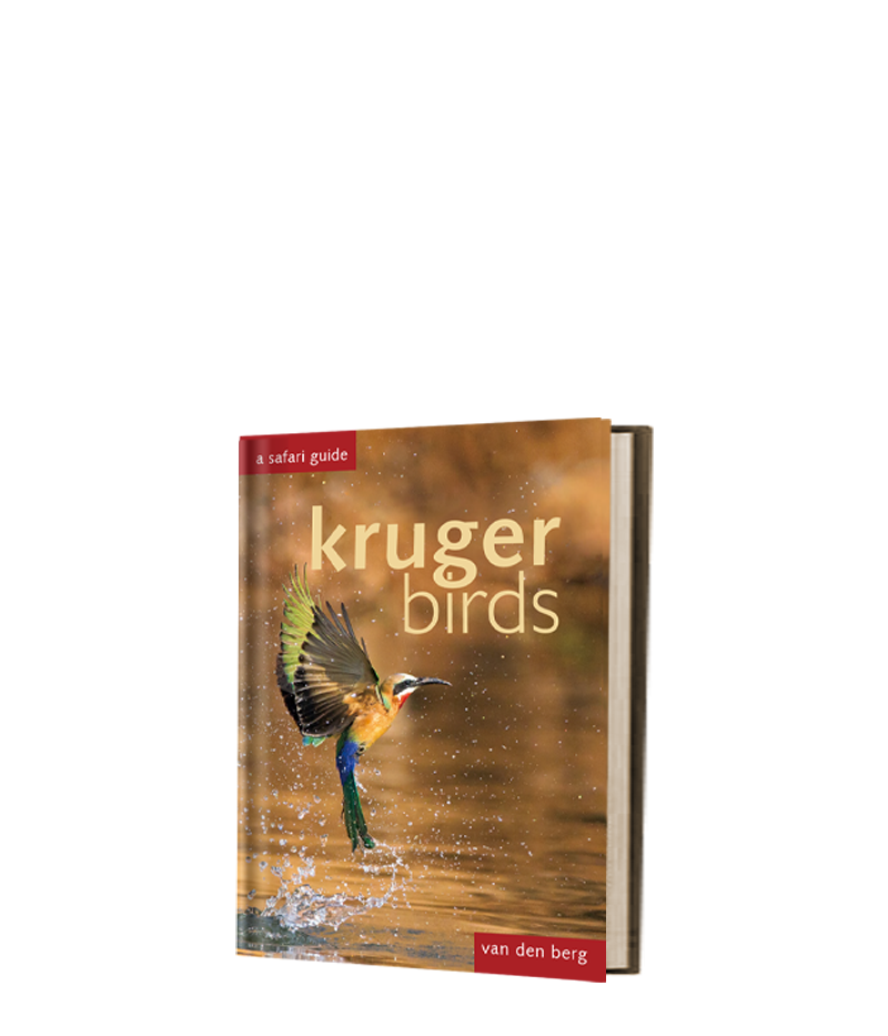 Kruger Birds - HPH Publishing South Africa