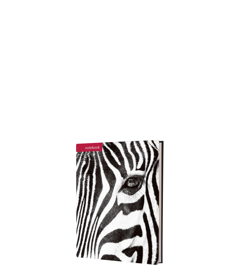 Zebra Notebook - HPH Publishing South Africa