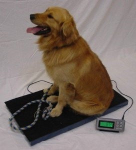 LW Measurements Tree LC-VS Low Cost Portable Vet Scale - 400 lbs x 0.1 lb
