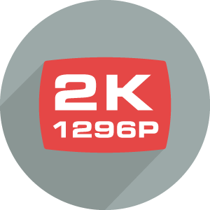 R30 records in 2K resolution