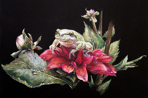 Madam Treefrog - Limited Edition Giclee