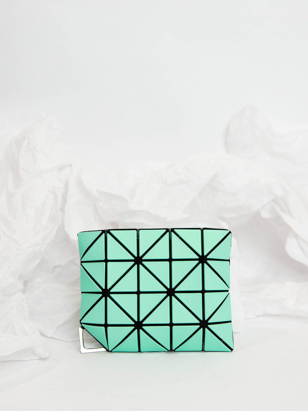 Flipper Passport Case - Mint Green