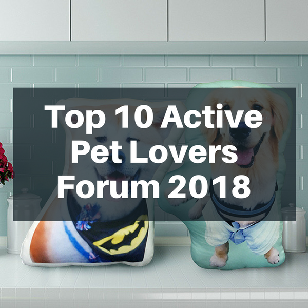 Top 10 Active Pet Lovers Forum 2018